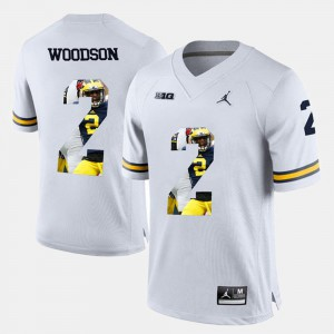 Charles Woodson Michigan Jersey White Player Pictorial #2 Men 796133-933
