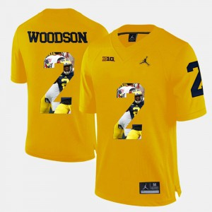 Yellow Player Pictorial Men's Charles Woodson Michigan Jersey #2 196182-208